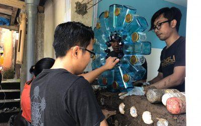 Ubud Raw Earth & Ecobrick Building Workshop:  One Wall, 50 kgs of plastic secured.